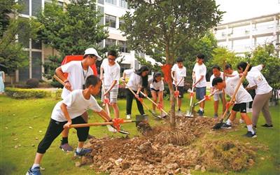 種下一棵友誼樹