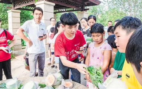 暑期大學生為鄉村注入新活力 開發小程式幫賣菜