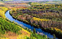 大兴安岭重点国有林区改革取得重要成果