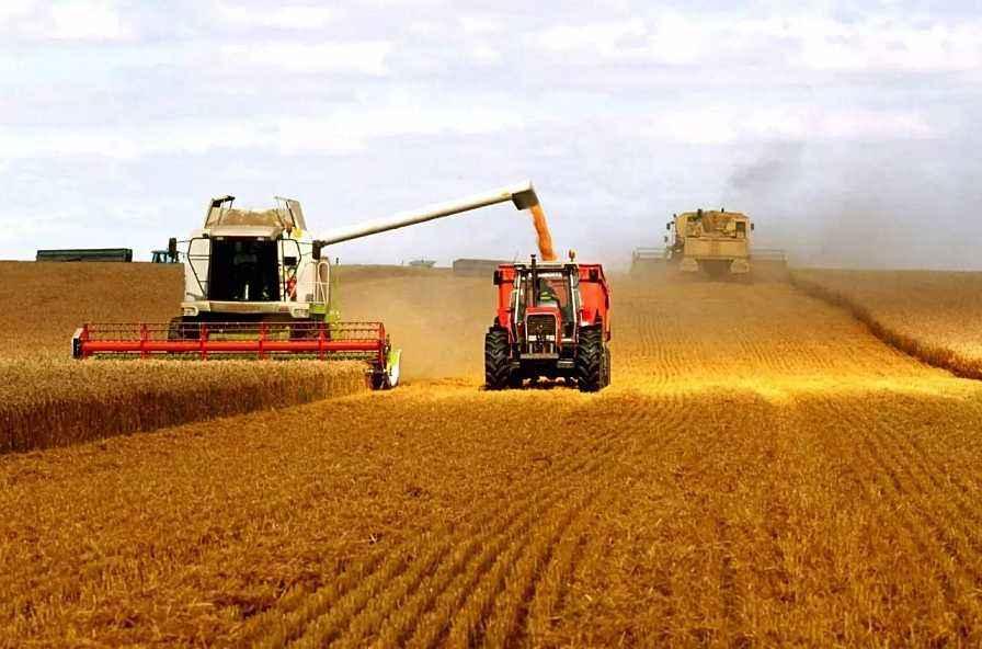 天津发布2020年粮食生产情况报告