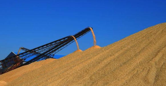 我国稻谷小麦库存可满足一年消费需求