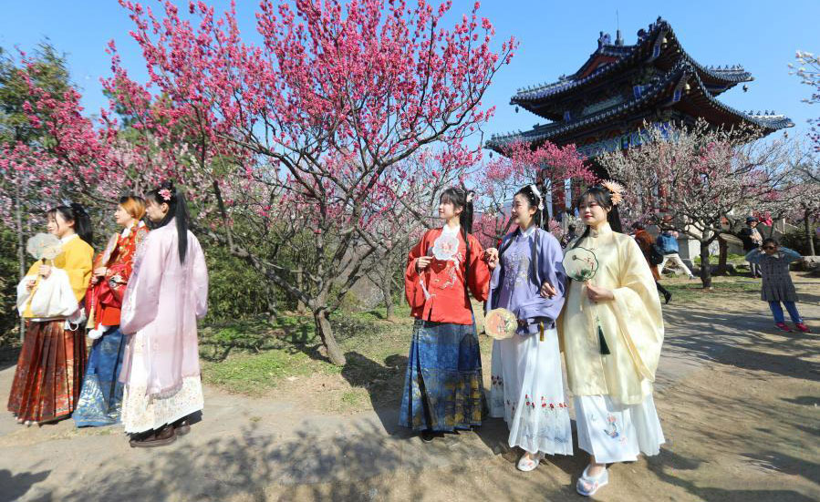 南京国际梅花节开幕